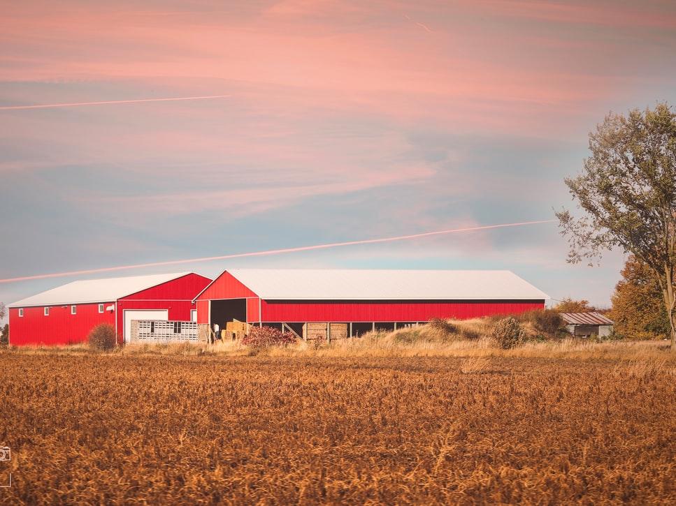 人工智慧打造的農場你能想像嗎?精準農業完美你的農作物!(上)